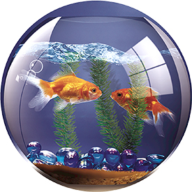 Fellowes 5881103 Brite Pad Goldfish Bowl Mouse Pad Pack of 6